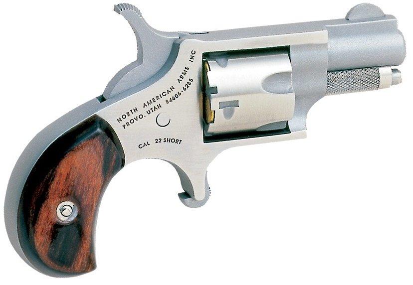 North American Arms (NAA) NAA-.22 Short Short 5RD .22 Short 1